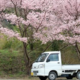 岩見沢市車のレンタル・販売
