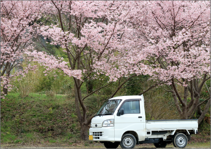 岩見沢市部門紹介建築部門